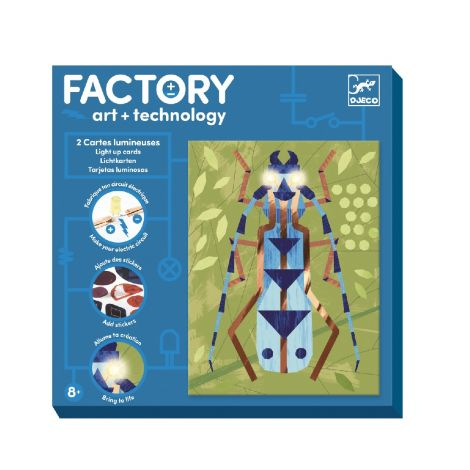 FACTORY ART + SCIENCE PROJECT KIT: 'INSECTARIUM' PICTURE BOARDS