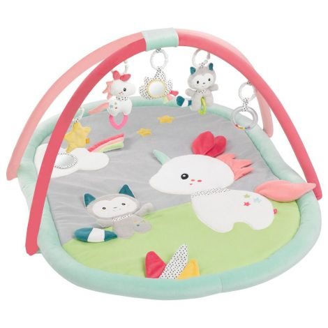 AIKO & YUKI ACTIVITY PLAY GYM